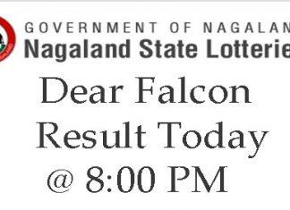 Dear Falcon Result