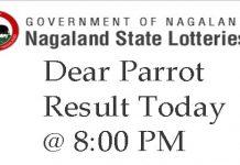 Dear Parrot Result