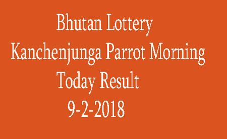 Kanchenjunga Parrot Morning Today Result