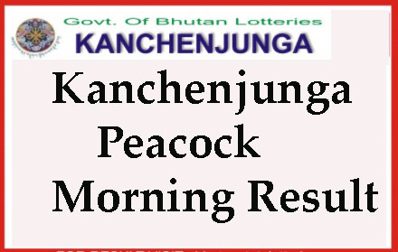 Kanchenjunga Peacock Morning Today Result