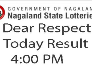 Nagaland Lottery Dear Respect Result Today