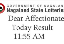 Nagaland State Dear Affectionate Result