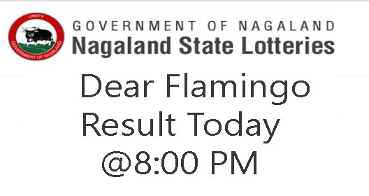 Nagaland State Lottery Dear Flamingo Result