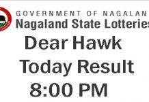 Nagaland State Lottery Dear Hawk Result