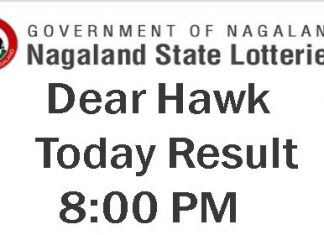 Nagaland State Lottery Dear Hawk Result