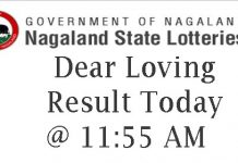 Nagaland State Lottery Dear Loving Result