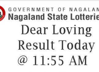 Nagaland State Lottery Dear Loving Result
