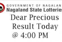 Nagaland State Lottery Dear Precious Result