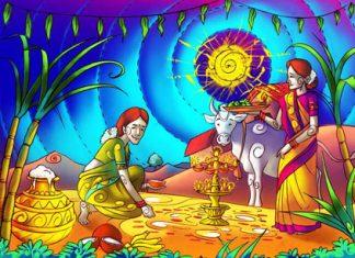 Pongal-Festival Image Download HD